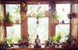 """Lexi Katz's apartment in Buffalo. She has about 60 houseplants throughout her home. """"Having houseplants is that reminder for me to take time. To remember that care is a necessary aspect of all elements of life,"""" she says"""