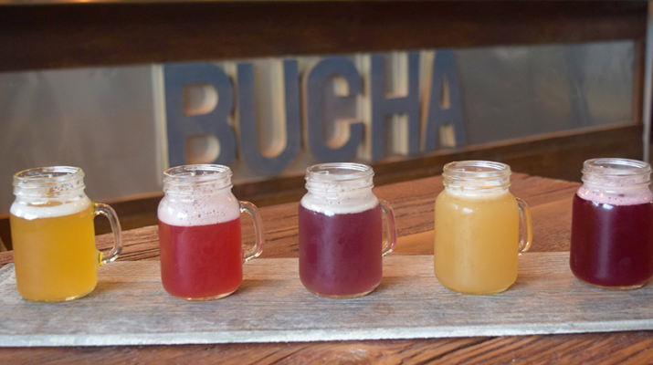 A flight of kombucha samples at Bootleg Bucha features flavors including Cucumber Lime Mint and Apple Spice.