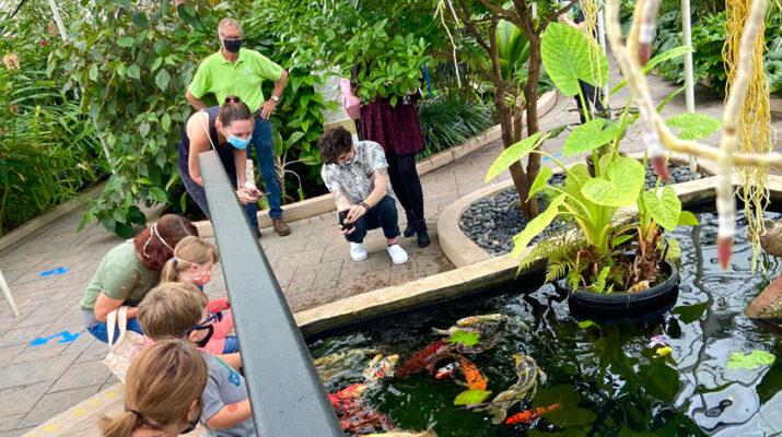 Photos of the Buffalo and Erie County Botanical Gardens courtesy of Ben Read.